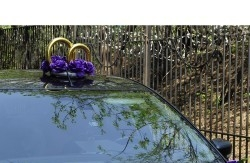 украшение на крышу машины с синими розами