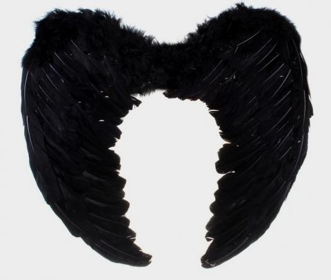 крылья черные из перьев