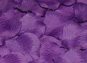 фиолетовые лепестки роз купить