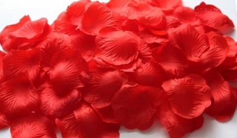 красные лепестки роз ароматные купить