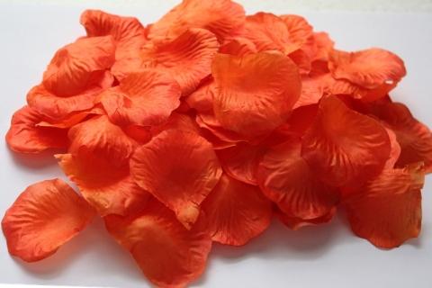 оранжевые лепестки