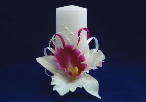 семейный очаг с белой орхидеей тут