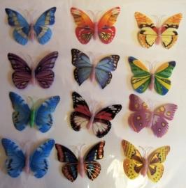 бабочки на свадьбу купить