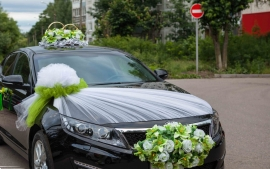 зеленый комплект на машину