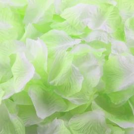 мятные лепестки роз картинка