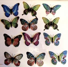 свадебные бабочки купить
