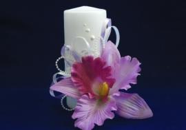 семейный очаг с орхидеями купить
