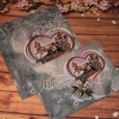 свадебные книги пожеланий фото