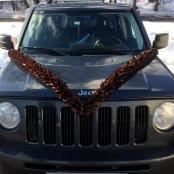 коричневая лента на машину фото