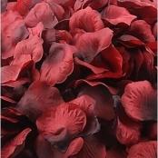 лепестки роз бордовые марсала фото