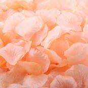 чайные лепестки роз фото