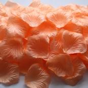 лепестки роз персиковые