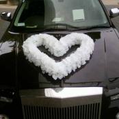 белое сердце на капот